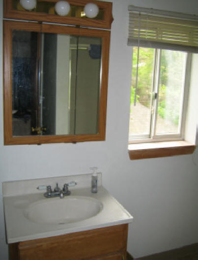 Bath_Sink__Window