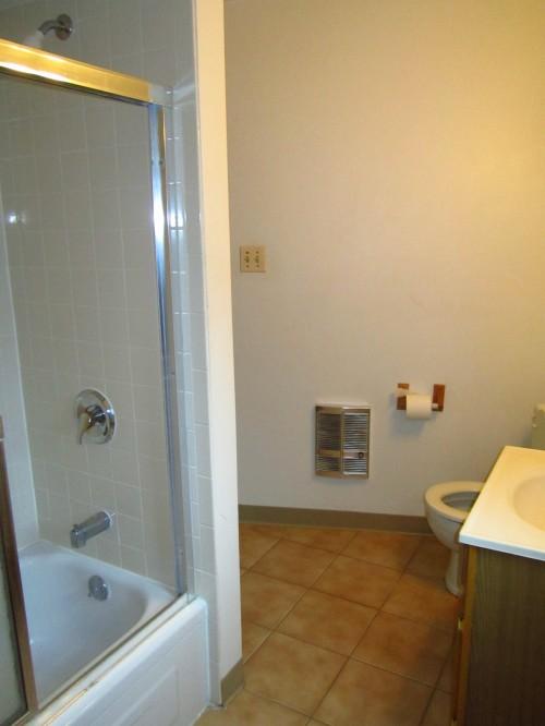 Bathroom New Tile