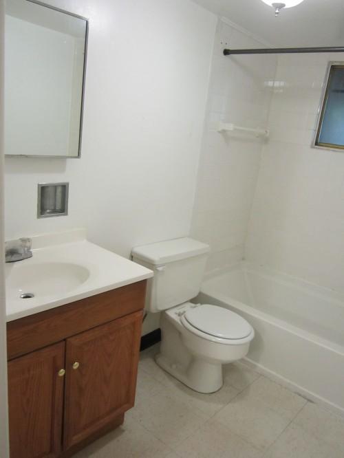 Bathroom - Updated (2)