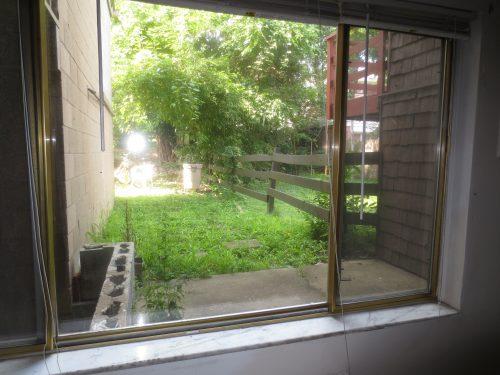 Front Window (2)