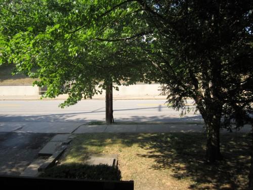 Bedroom 1 Front Yard
