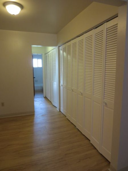Hallway Closets (2)
