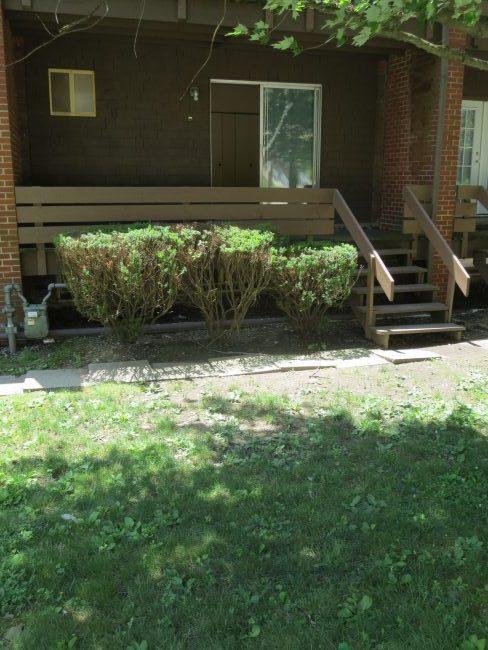 Front Deck & Lawn