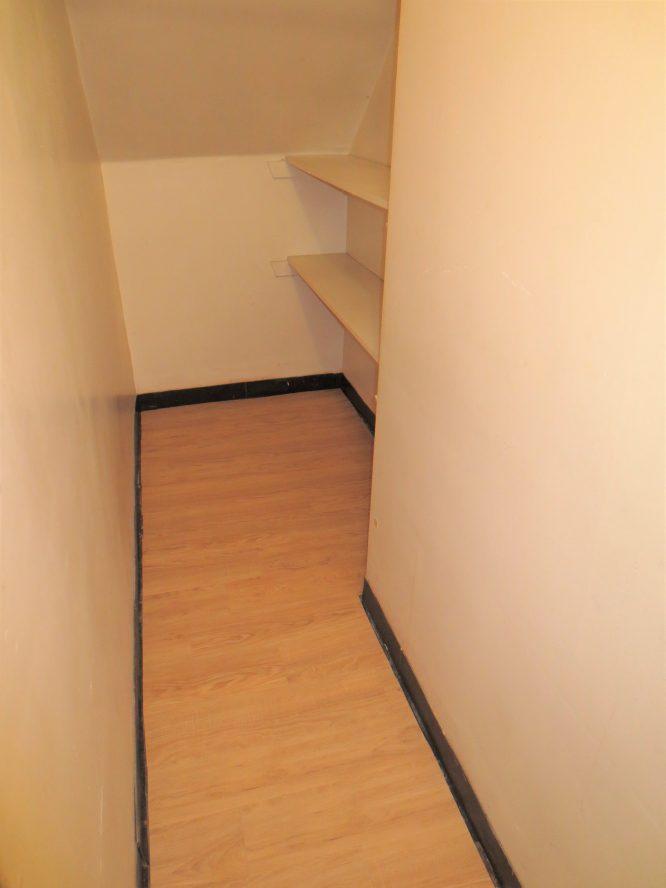 Large Closet in Living Rom