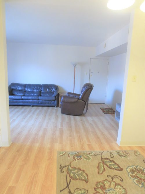 Dining & Living Room (2)